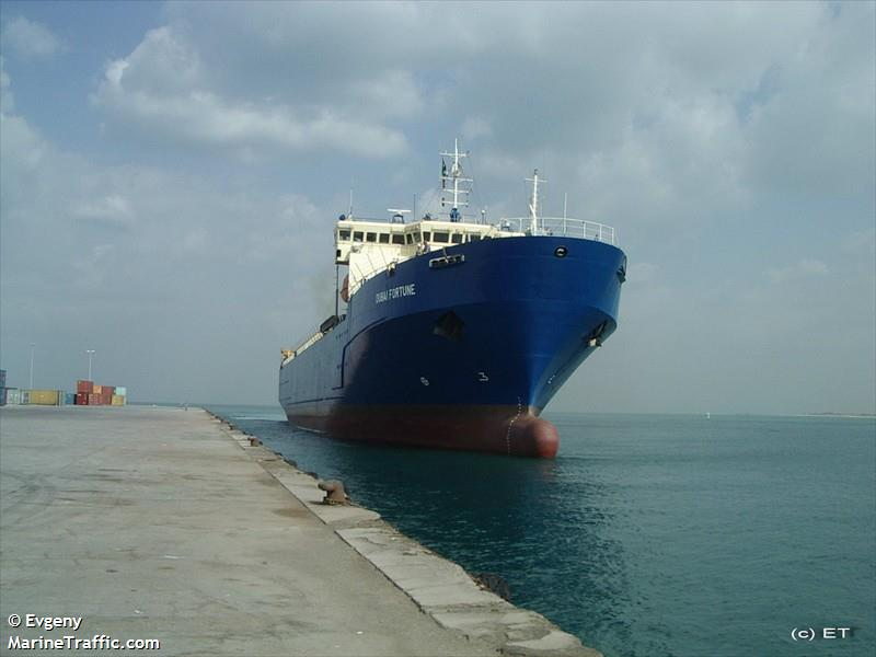 Vessel details for: DUBAI FORTUNE (Container Ship) - IMO