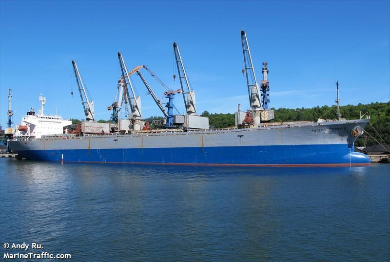 Vessel Details For: PACIFIC SELINA (Bulk Carrier)