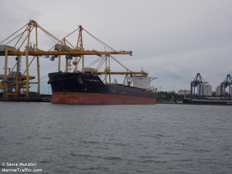 Vessel Details For Lowlands Tenacity Bulk Carrier Imo 9586801