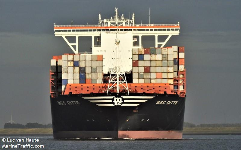 Vessel details for: MSC DITTE (Container Ship) - IMO 9754953