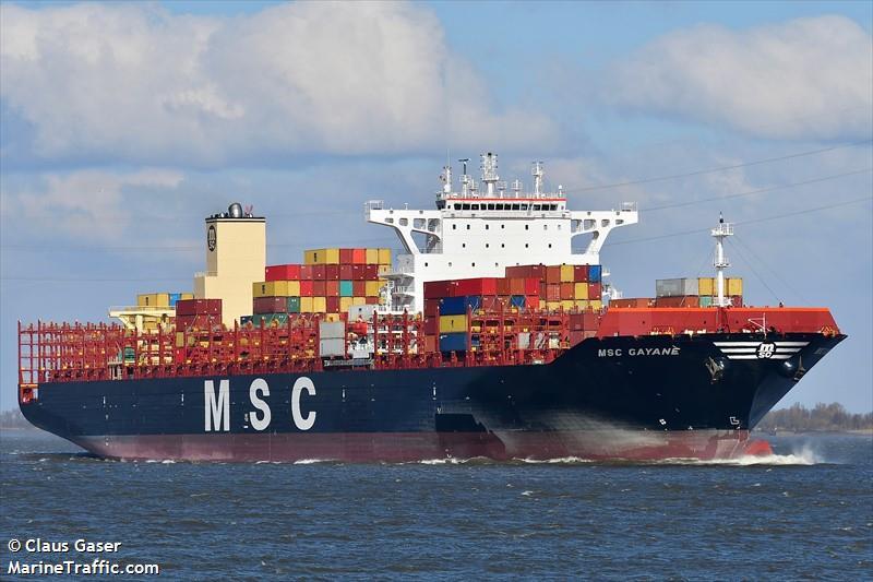 Image result for MSC Gayane