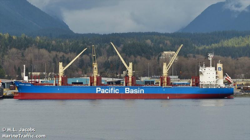 Vessel details for: IMABARI LOGGER (Bulk Carrier) - IMO ...