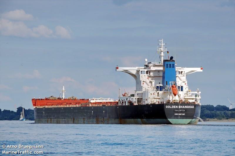 picture of golden shanghai ais marine traffic
