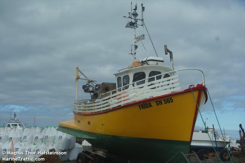 FRIDA SH565