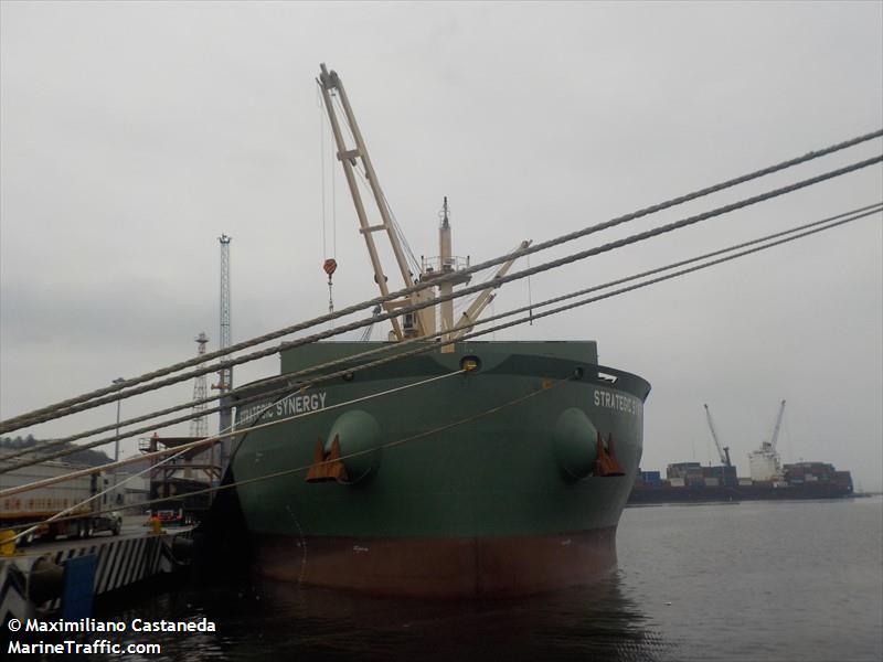 STRATEGIC SYNERGY, Bulk carrier, IMO 9648087 | Vessel