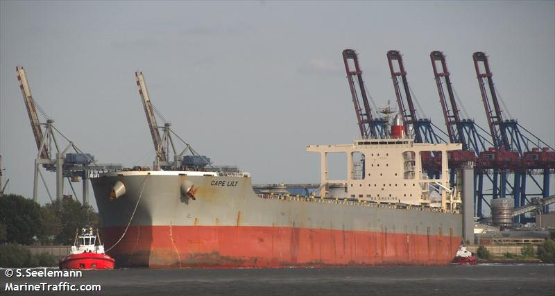 vessel details for cape lily bulk carrier imo 9612430 mmsi