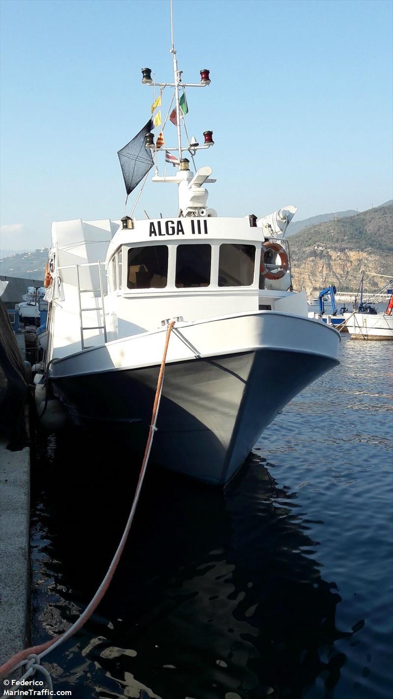 ALGA III