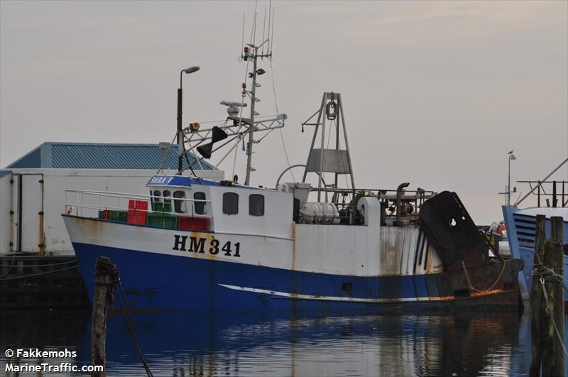 HM 341SARA V