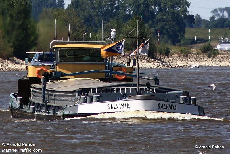 SALVINIA