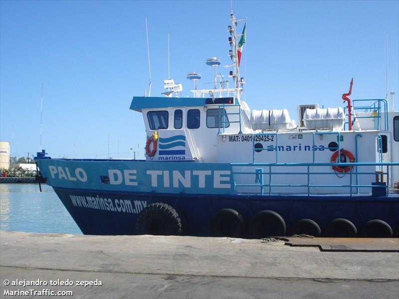 PALO DE TINTE