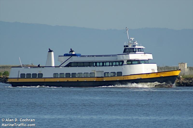 BAY MONARCH