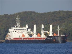 African Lily Bulk Carrier Registered
